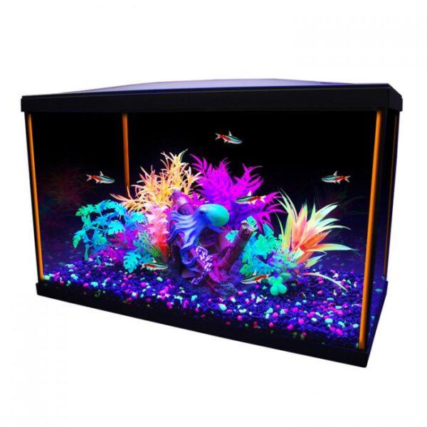 Aquarium équipé 10G iGlo Marina, 38 L (10 gal US)